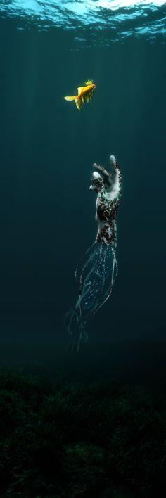 "Consulta mi proyecto @Behance: ""King Fish"" https://www.behance.net/gallery/42937633/King-Fish"