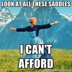 Oh so accurate... This is me. Looking at Devecouxs' and Amerigo's and Voltaire's that I can't afford! And I want out of my Wintec now that I've sat in a real saddle.... Struggles....