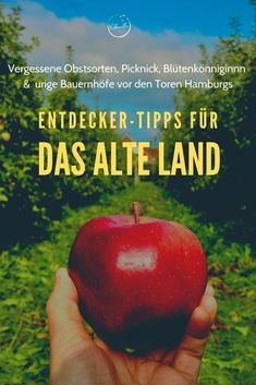 """Wenige Kilometer vor den Toren Hamburgs versteckt sich hinter Deichen und Leuchttürmen ein Paradies aus Apfelbäumen, alten Fachwerkhöfen, malerischen Grachten und skurrilen Traditionen: Das """"Alte Land"""" ist dabei nicht nur zur Apfelernte einen Besuch wert. Wer eine Auszeit von der City braucht, ist hier das ganze Jahr über gut aufgehoben! Hier kommen meine ganz persönlichen Entdeckertipps. Der Bus, Apple, Fruit, Harvest Season, Apple Fruit, The Fruit, Apples"""