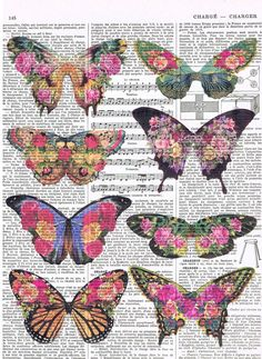 Butterflies,Colourful.antique.Gift, Book Page Prints, French Text, Paris.Flowers,Floral,  home decor,Affordable Art,special, deal.insect.dad