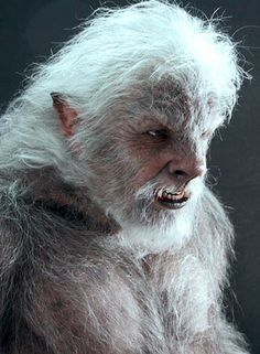 More of the unused creature suit from The Wolfman (2010).