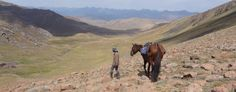 Adventurous trail ride across the mountains and valleys of central Kyrgyzstan. Journey off the beaten track, staying in simple tented camps and yurts. Trail Riding, Trek, Journey, Camping, Horses, Adventure, Mountains, Animals, Ideas