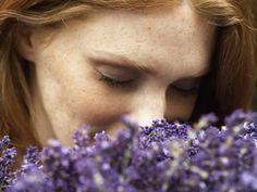 How to Cut Back Lavender Flowers That Have Bloomed Lavender Fields, Lavender Flowers, Purple Roses, Lilac, Plante Anti Stress, Anti Stress Naturel, Lavender Recipes, Border Plants, Lavandula Angustifolia