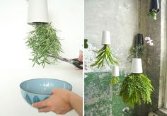 Creative Planter Ideas | Concrete Geodesic Planter ($68): Each of these planters is hand ...