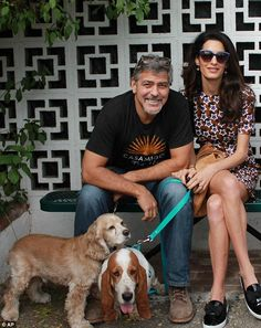 Two weeks ago, they finally held a party, but only a select group of villagers are believed to have been invited Amal Clooney, George Clooney, Cocker Spaniel, Amal Alamuddin Style, Inside Castles, Basset Hound Dog, Famous Stars, Four Year Old, Star Wars