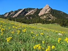 Boulder... is this too obvious? COME VISIT ME!