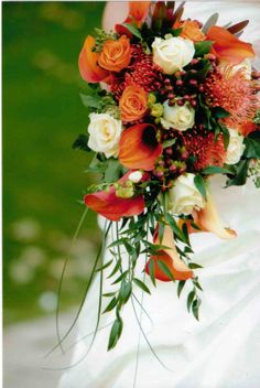 Shower style Brides bouquet perfect for an autumn wedding including calla lilies and pin headed protea www.knutsfordbloom.co.uk