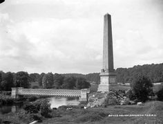 Boyne Obelisk, Drogheda, Co.Louth by French, Robert, photographer Published / Created: [between Statue Of Liberty, Ireland, French, Travel, Statue Of Liberty Facts, Viajes, French People, Statue Of Libery, Destinations