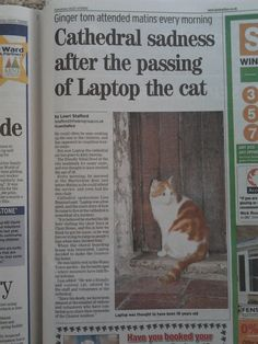Report in local newspaper on 19th September 2013, marking the death of the cathedral cat at Canterbury last week.   Picture of him on my page here.