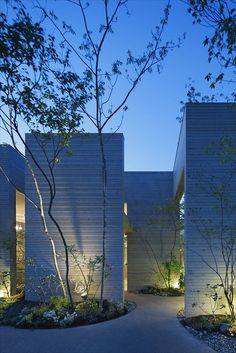 Forest Corridor by UID Architects
