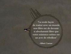 Citation de Camus   Inform'Action
