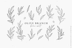 watercolor & line art by Skyla Design on Creative Market - Tattoos - Olive branch watercolor & line art by Skyla Design on Creative Market - Tattoos - Botanical Clipart Illustration, Greenery Leaves Foliage, Dainty Fine Art Eucalyptus Olive Branch Lin Branch Drawing, Branch Art, Leaf Drawing, Vine Drawing, Vine Tattoos, Leaf Tattoos, Small Tattoos, Flower Tattoos, Tatoos