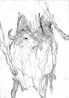 Drawings by artist Zakuro Aoyama