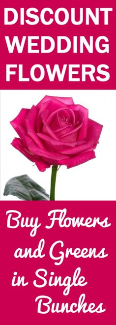 Wholesale Wedding Flowers - Buy in Single Bunches  Learn how to make bridal bouquets, wedding corsages, groom boutonnieres, church decorations, pew ends and reception centerpieces.  Buy fresh flowers and discount florist supplies. Coral Wedding Flowers, Best Wedding Colors, Rustic Wedding Flowers, Diy Wedding Backdrop, Wedding Reception Centerpieces, Discount Flowers, Wedding Gifts For Newlyweds, Vintage Wedding Signs, Florist Supplies