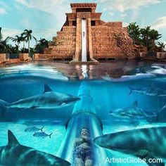 Atlantis waterslide,Atlantis Resort Paradise Island, Bahamas   Creative World