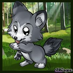 baby wolf farbe