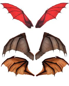 dragon wing - Google Search