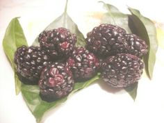 Filling fruit, like blackberry, help you feel feed so you eat less. Check other type of filling food.
