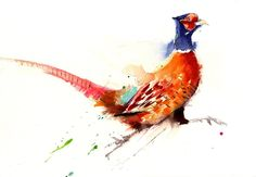 jen buckley running pheasant print