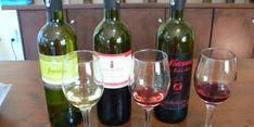 Sobre el vino se dice cualquier cantidad de cosas pero no todas son ciertas y Animal Gourmet te dice cuáles