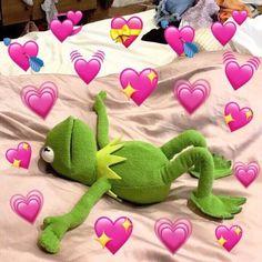 kermit memes Kermits in Love Frog Heart, Les Muppets, Sapo Meme, Memes Lindos, Heart Meme, Cute Love Memes, In Love Meme, In Love Gif, Sweet Love Memes