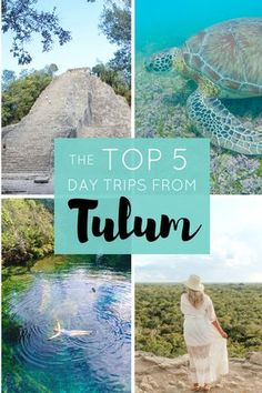 Top Day Trips From Tulum Mexico | The Republic of Rose