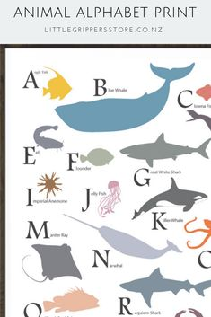 Gender neutral design This unique sea animal alphabet poster makes a wonderful addition to kids rooms. The gender neutral design will suit any space and is a fantastic way for kids to learn their ABCs. Ocean Bedroom Kids, Ocean Themed Nursery, Baby Nursery Themes, Nursery Prints, Nursery Ideas, Abc Nursery, Nursery Layout, Baby Bedroom, Nursery Room