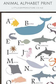 Ocean Bedroom Kids, Ocean Themed Nursery, Baby Nursery Themes, Nursery Prints, Nursery Ideas, Abc Nursery, Nursery Layout, Baby Bedroom, Nursery Room