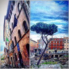 Burckhardt's house in Via del Sudario & Largo di Torre Argentina . • • #Miles7one #nx7 #roma #wanderlus7 #loveitaly #italia #italian #torreargentina #visitrome #rome #igers #igdaily #instagram #instagood #goodvibes #travel #travelgram #traveling #travelling #travels #travelblog #instatravel #travelingram  #traveler #traveller #mytravelgram #travelphotography #traveltheworld