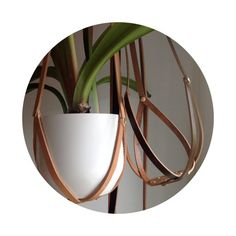 Recycled Leather Plant Hanger with Brass by BlisscraftandBrazen