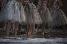 Nutcracker by ABT, December 2012 - Ballet, балет, Ballett, Ballerina, Балерина, Ballarina, Dancer, Dance, Danza, Danse, Dansa, Танцуйте, Dancing