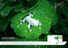 Discovery Paper - environment friendly campaign by vasco laranjeira, via Behance