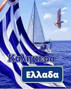 Greek Beauty, Beautiful Pink Roses, Name Day, Greek Quotes, Ancient Greece, Sailing Ships, Good Morning, Boat, Greece