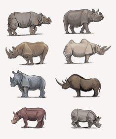 Rhino Animal, Rhino Art, Stone Age Animals, Animal Action, Jungle Art, Cat Pose, Big Animals, Extinct Animals, Prehistoric Creatures
