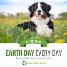 All Natural Pet Supplies by Pure and Natural Pet Carbon Footprint, Pet Grooming, Earth Day, Amazing Things, Farmers, Doggies, Sustainability, Pet Supplies, Eco Friendly