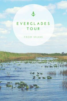 Everglades Tour from