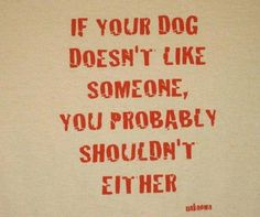 mhmm but my dog likes everyone, even people i dont. does that mean i need to too??