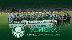 #PALMEIRAS CAMPEÃO