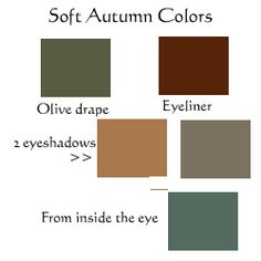 Soft Autumn Eye Makeup Colors. -Below are the eyeshadow cool and warm colors, the olive drape, and the brown eyeliner I use on almost every Soft Autumn. The eye above belongs to a cool-side Soft Autumn and my usual brown eyeliner (Rimmel Sable) can be very slightly dark in the daytime. On her, Soft Summer brown-grey (Clinique Smoky Brown) is very good as well.