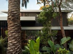 Wentworth House by MHNDU Architects, Sydney