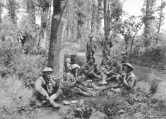 1918 - Australian, American and British forces, are victorious at the Battle of Hamel
