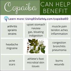 04Copaiba_Benefits