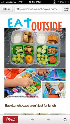 tip for picnic: use storage containers to place food in and put chips, fruit, etc in muffin tin liners to keep food seperate