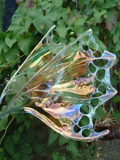 Custom order for Real Fairy wings. $90.00, via Etsy.