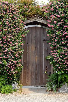 flowers-n-door.jpg california, doors, flowers, images, mendocino, nature, vertical, west coast, western usa