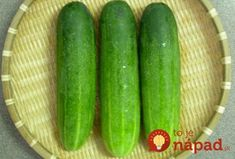 Did you know that cucumbers are the most widely planted vegetables in the world, which ranks the place? The miracles of cucumber are too many. Here we give 9 reasons why to eat cucumber: ̵… Regrow Vegetables, Home Grown Vegetables, Growing Vegetables, Fruits And Veggies, How To Store Cucumbers, Cucumber Health Benefits, Baby Food Recipes, Healthy Recipes, Healthy Food