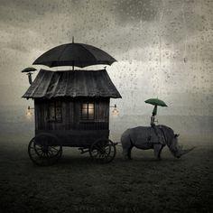 home & away / #dark_circus #night_circus #carnival
