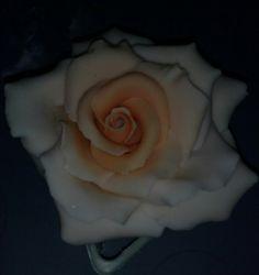 Big gumpaste rose