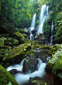 Australia Travel Inspiration - Chalahn Falls, Lamington National Park, Queensland, Australia by Mark Wassell on Brisbane, Melbourne, Perth, Places Around The World, Around The Worlds, Beautiful World, Beautiful Places, Australia Travel, Queensland Australia