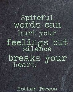 Spiteful words can hurt your feelings but silence breaks your heart. - Mother Teresa